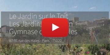 Toitures-terrasses : un renouveau végétal