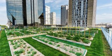 « Les toits végétalisés ont un effet bénéfique sur les gens. »