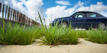 Le béton végétalisé, pour redonner un tempo naturel à nos villes