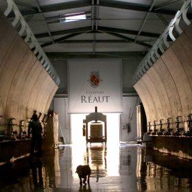 Chai Château Réaut ©DR