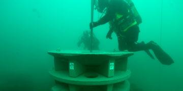 Comment le béton améliore la biodiversité marine ?